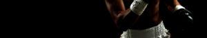 ボクシングをテーマにしたオンラインショップ |RONER by taRo ボクシング衣装オーダー専門サイト バナー画像